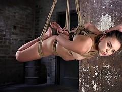 Hairy pussy brunette enjoys in rope bondage