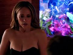 Jennifer Love Hewitt - The Client List s2e08