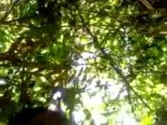 indonesia- asli anak ciwaru