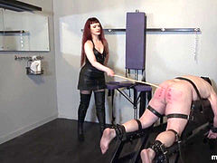 cropped for sensation -Spanking and whipping of immobilized ass